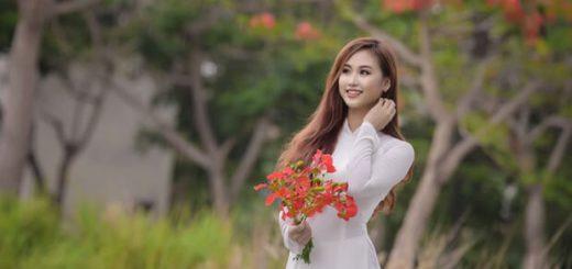 hoaphuong 26 520x245 - Phân tích diễn biến tâm trạng Mỵ trong truyện ngắn Vợ chồng A Phủ của Tô Hoài